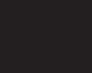 logo Energica Motor